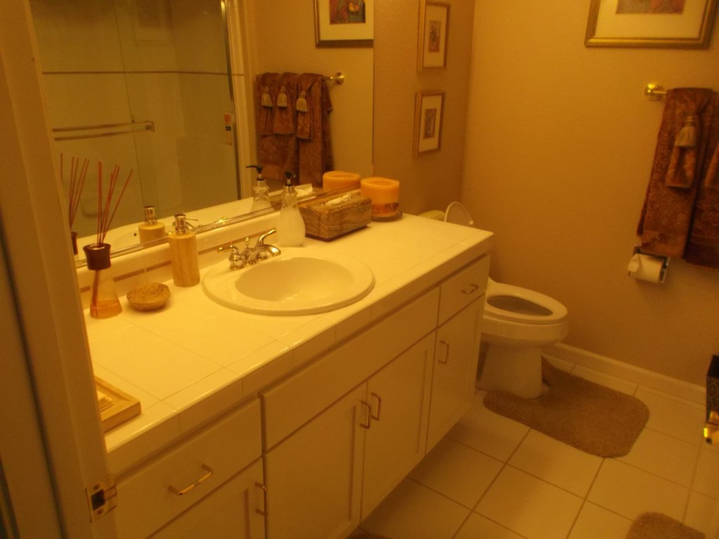 Bathroom Case Study Before